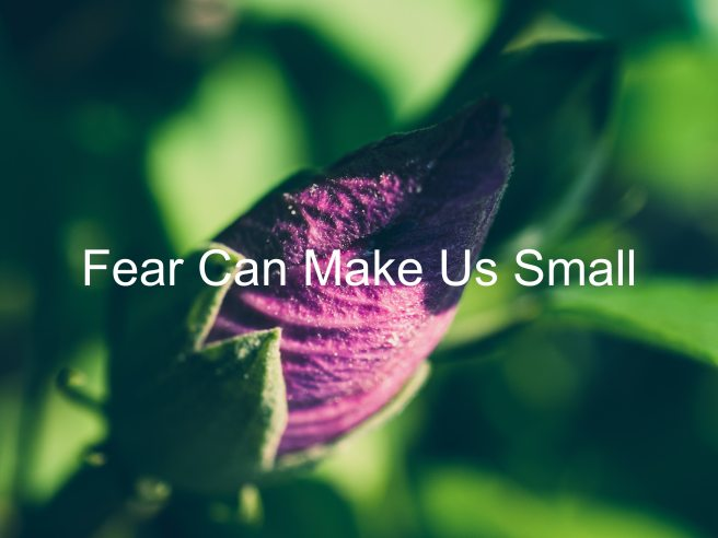 Fear Can Make Us Small